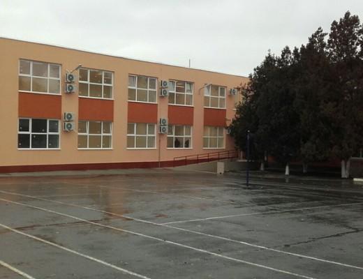 scoala noua